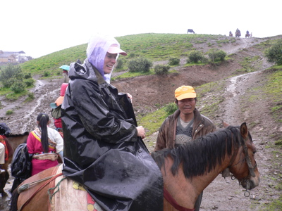 Horsesuse_4